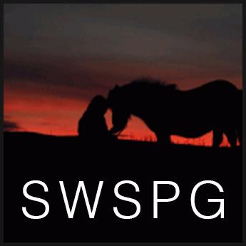 South West Shetland Pony Group